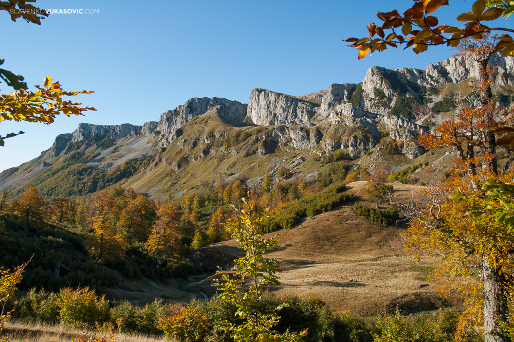 Autumn at Zelengora mountain.jpg