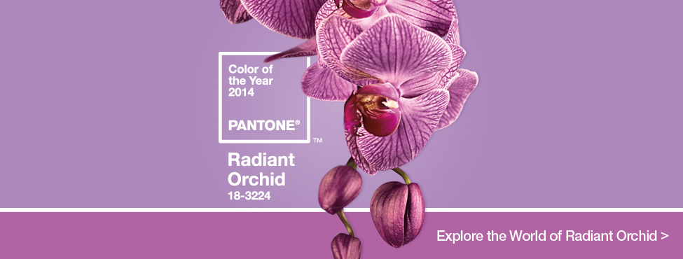 radiant_orchid_HomeSlider_Final.jpg