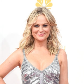 rs_634x1024-140825164847-634.amy-poehler-emmy-awards-red-carpet-082514.jpg