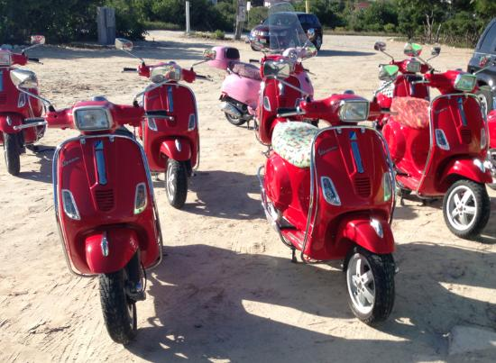 paradise-scooters.jpg