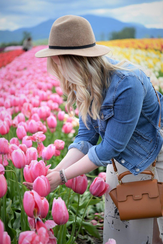tulip+festival.jpg