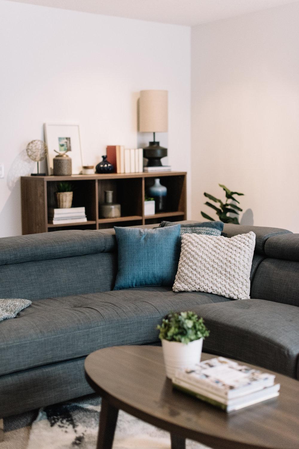 masculine modern basement