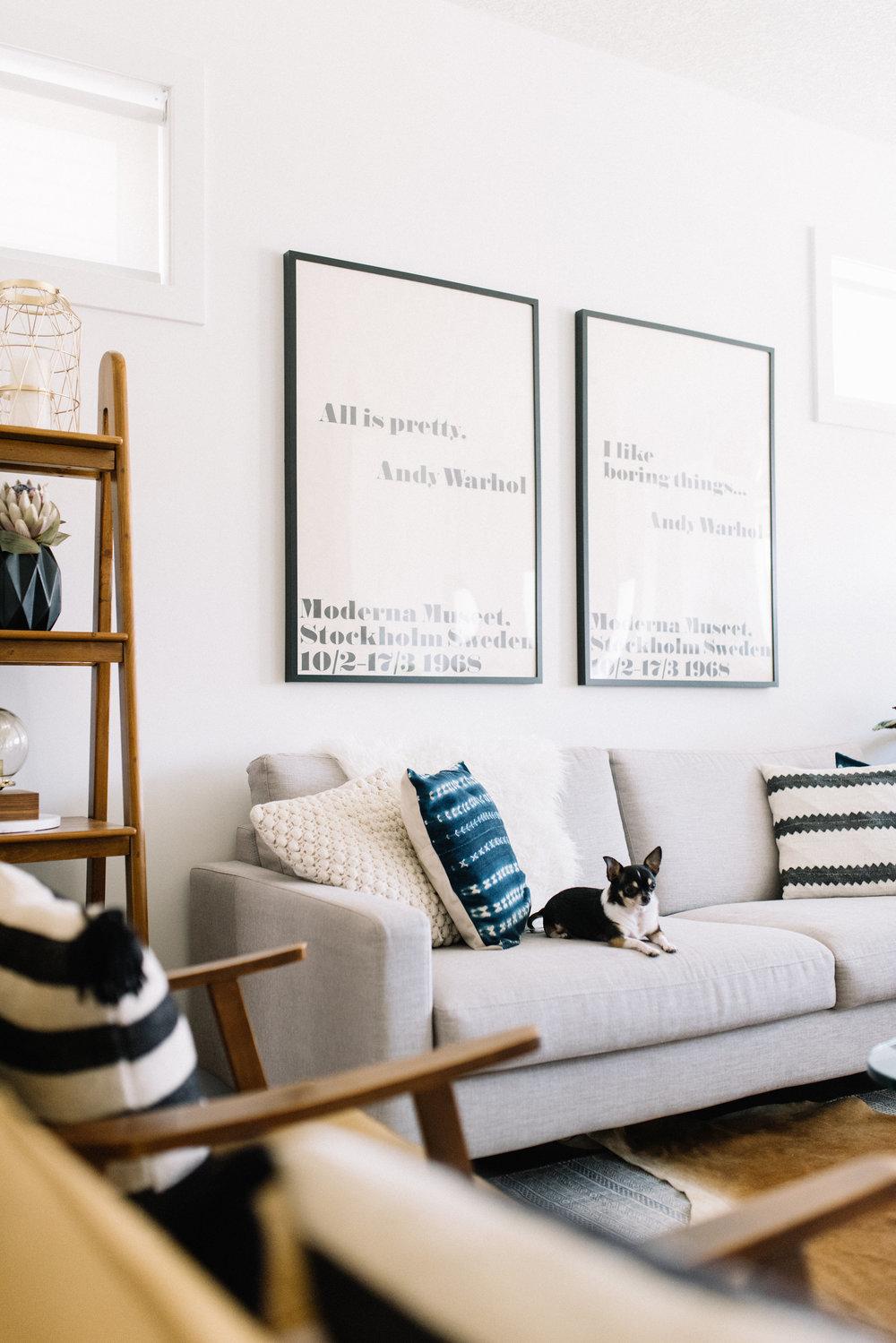 pet friendly design tips