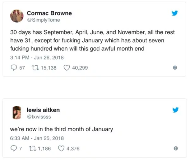 january longest month ever meme