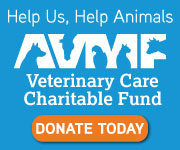 https://www.vccfund.org/forms/donation-form/?ref=349&company=Vandalia%20Animal%20Clinic/My%20Favorite%20Pet CLICK THE LINK ABOVE Through the American Veterinary Medical Foundation's Veterinary Care Charitable Fund, our hospital is able to help animals rescued from abuse and neglect and the pets of clients facing personal hardships. Your donations to the AVMF on behalf of our hospital will help us help animals. Click on the link to make your tax deductible donation.