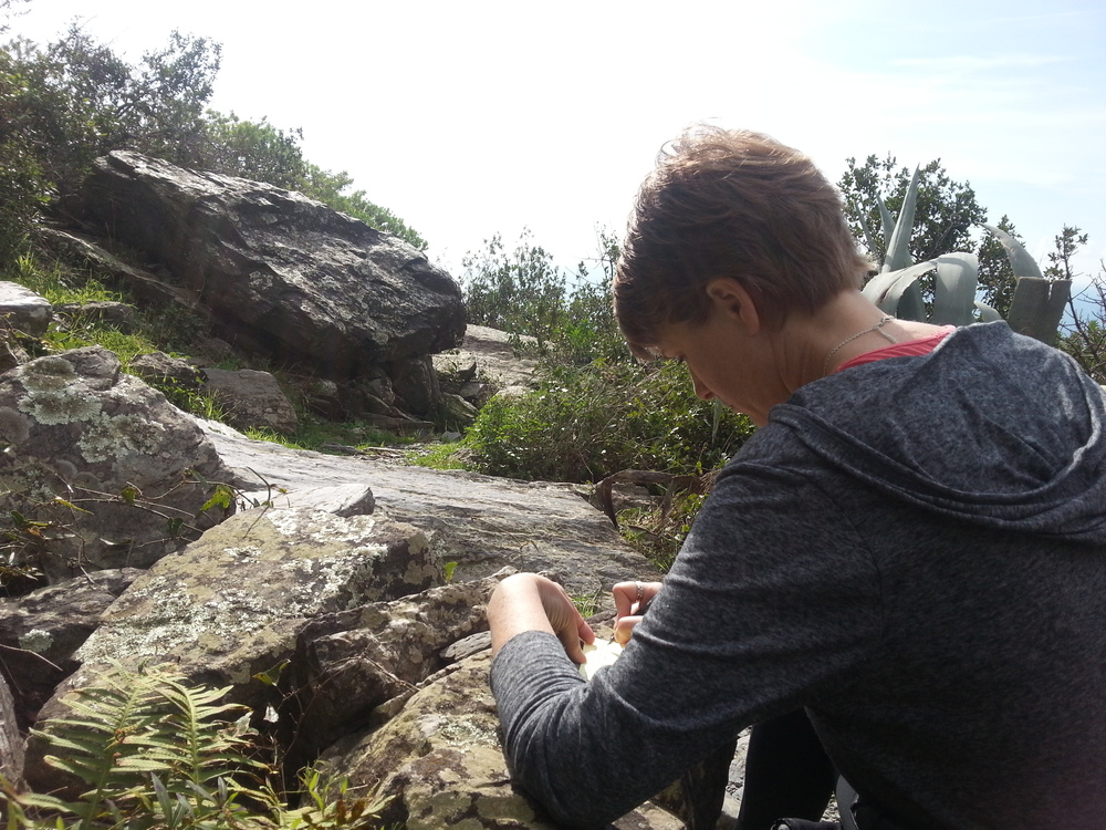 (This is me, on the trail in Cinque Terre, Italy, last February, writing a note card about volcano tears that ended up in  As Soon As I Fell .)