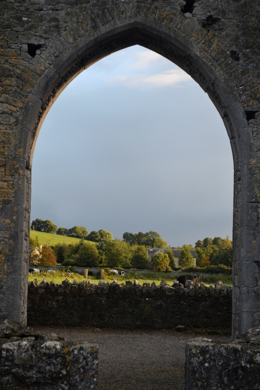 Hore Abbey, photo: Andy Bruner
