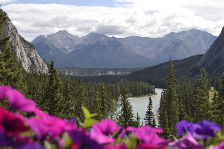 view from the back terrace of the Banff Springs Hotel