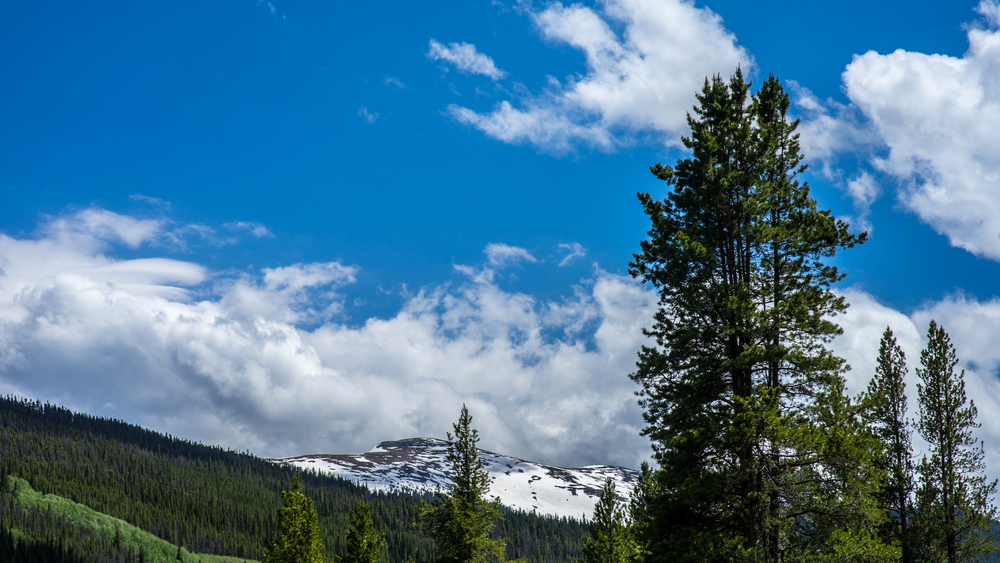 HOMESTAKE AREA, NEAR REDCLIFF, COLORADO - WWW.FRANKIEBOYPHOTOGRAPHY.COM