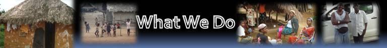 What we do banner.jpg