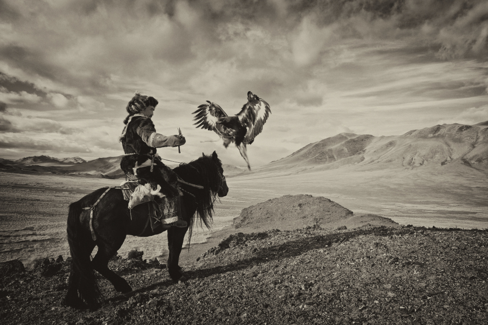 Haizem and his eagle in action. Captured near his home town of Sagsai in Bayan-Ulgii Province of Mongolia.
