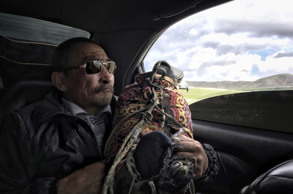 Haizem and his golden eagle travel back to western Mongolia. Captured in Bulgan Province, Mongolia.