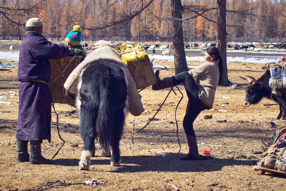 Khasar_S_Migration_V_Huvsgul_Mongolia_Spring_2014.jpg