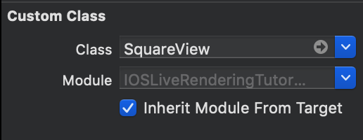square-view-identity-inspector.png