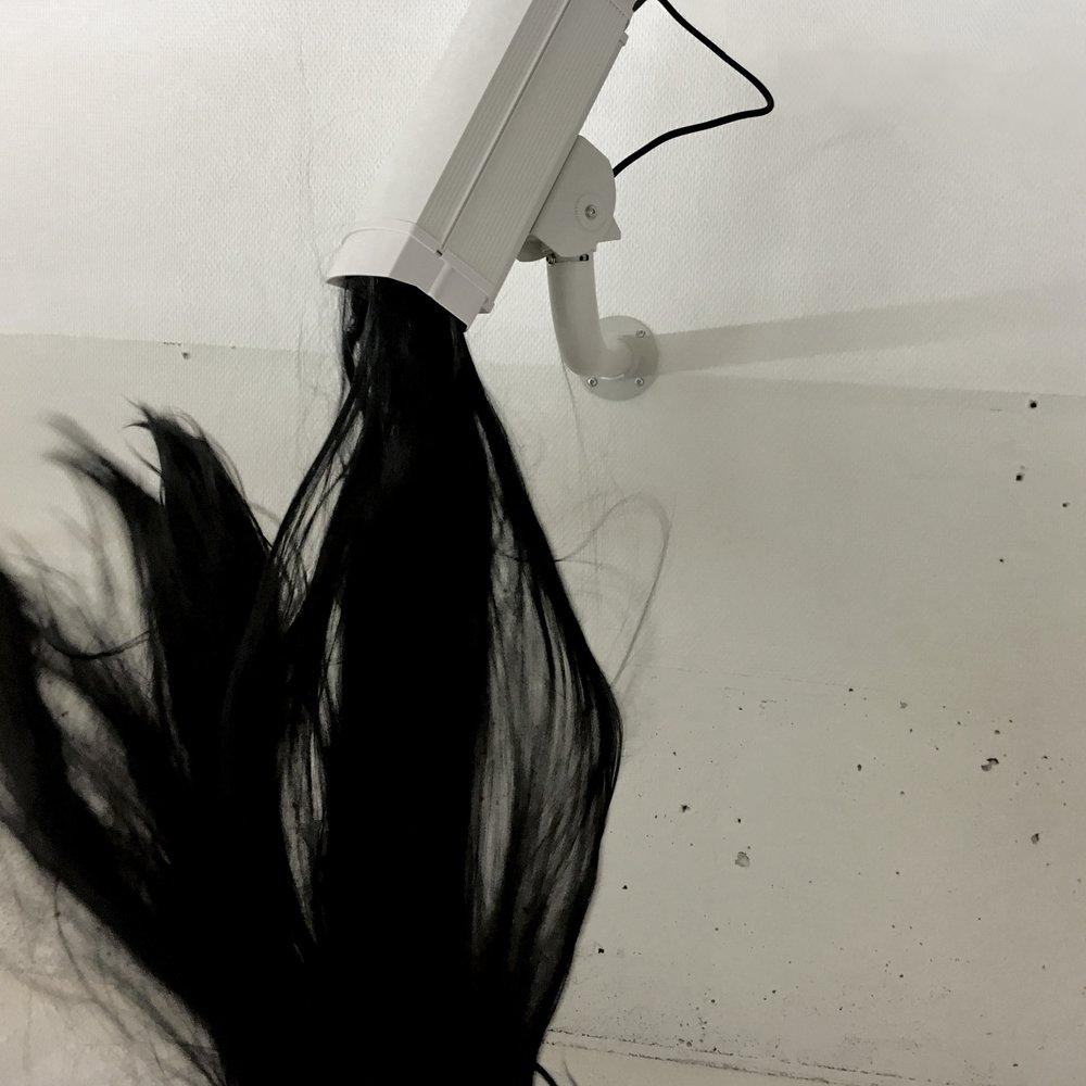 Hair in Camera