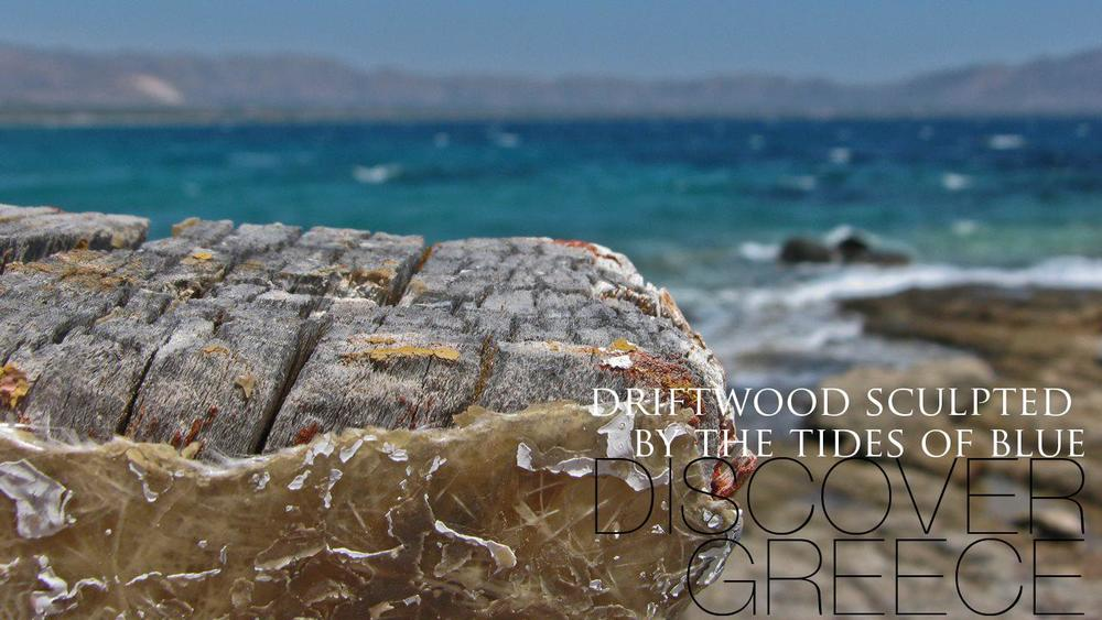 Driftwood Sculpted By The Tides Of Blue