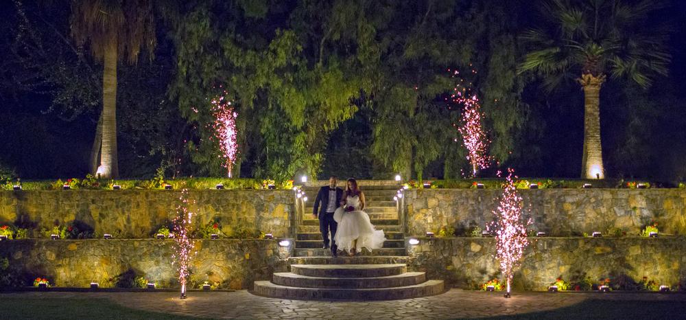 delago_wedding