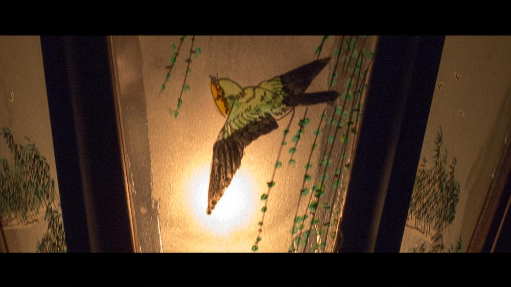 birdy4.jpg