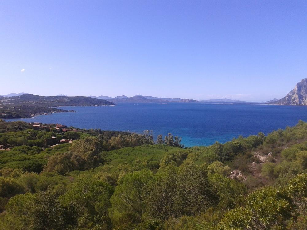 Cycling training camps Sardinia