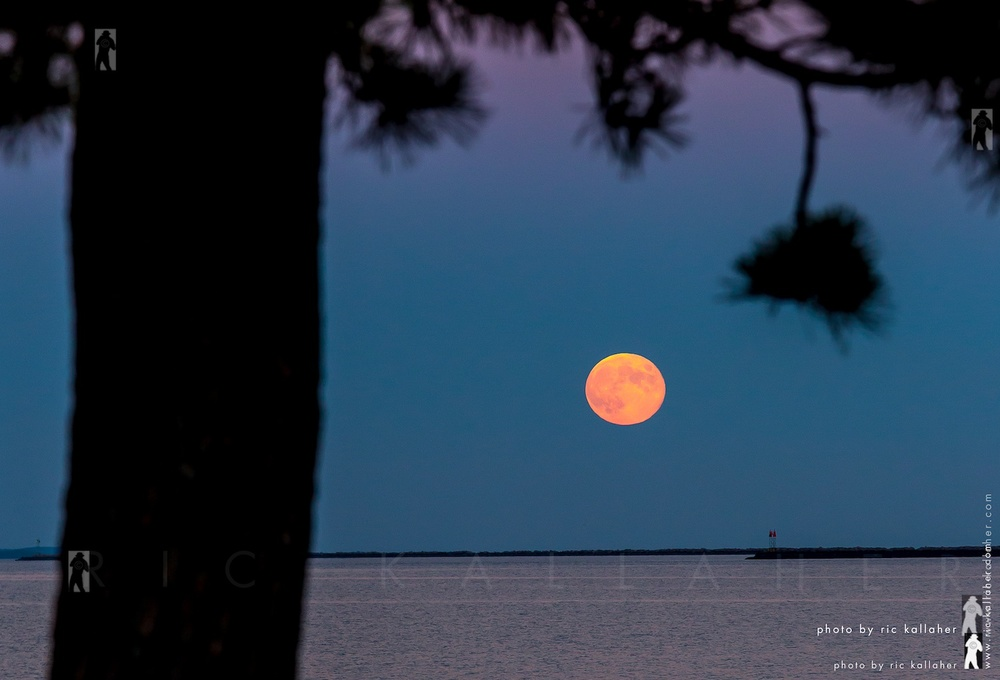 The Harvest Moon Rising Over Milford