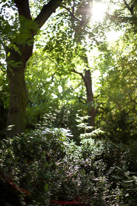 072913_jardin_du_luxembourg_020