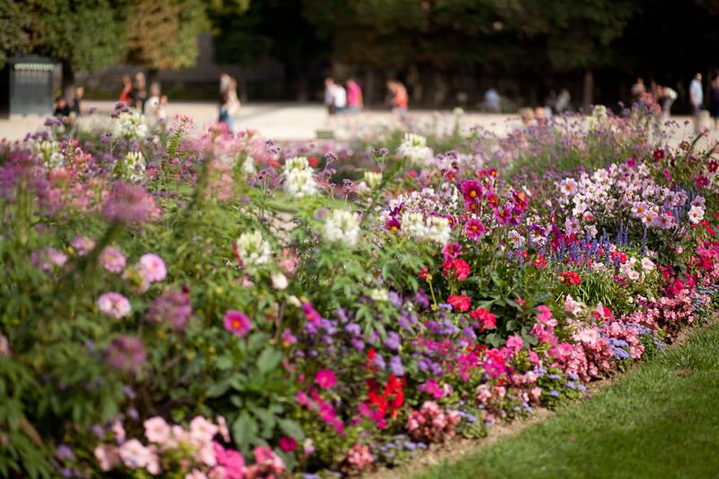 072913_jardin_du_luxembourg_080