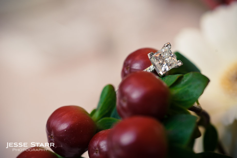 Engagement ring on cranberries