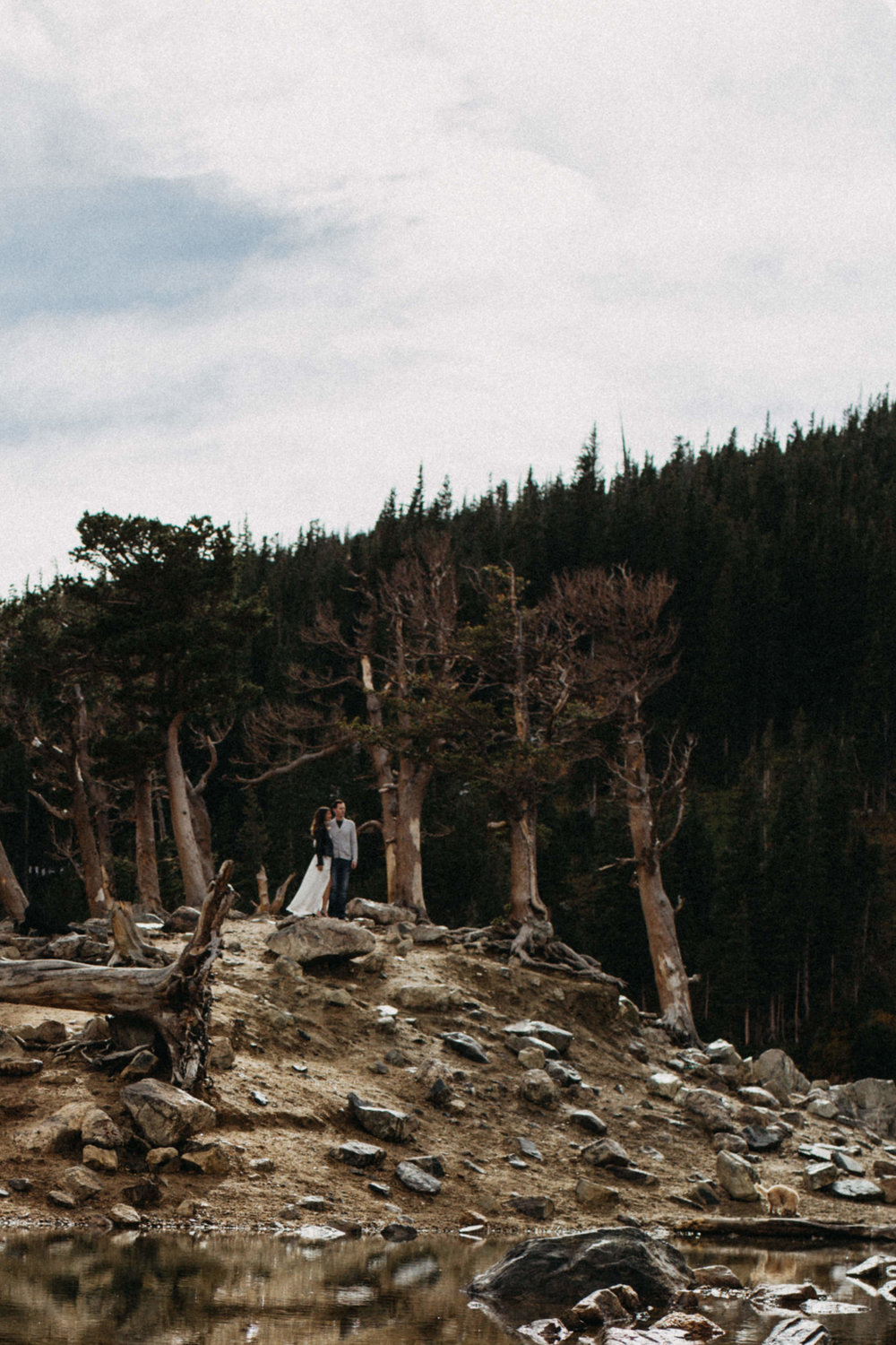 Destination Elopement Photography in Denver, Colorado