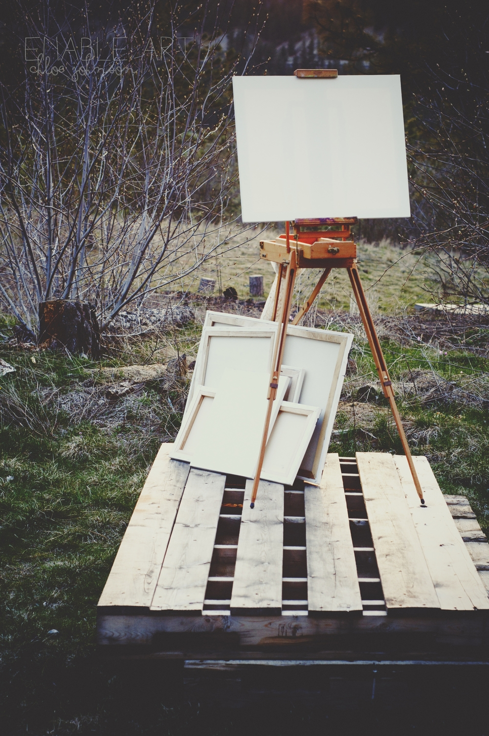 Blank Creativity