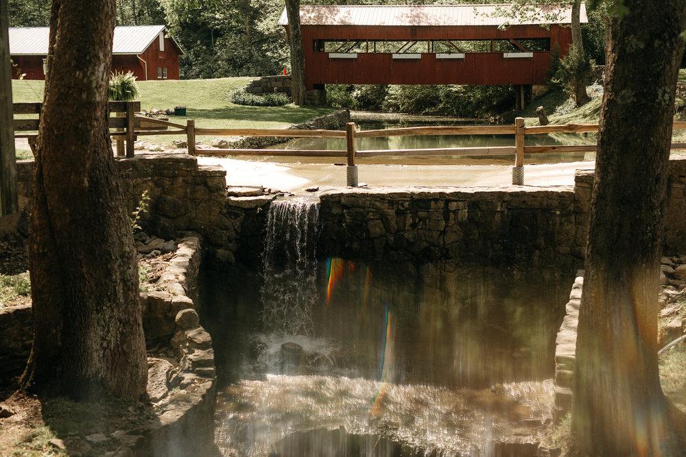 eastlyn bright intimate ohio backyard bohemian forest wedding photographer -26.jpg