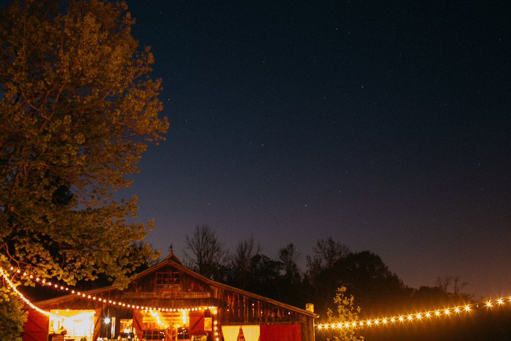 eastlyn bright intimate ohio backyard bohemian forest wedding photographer -223.jpg