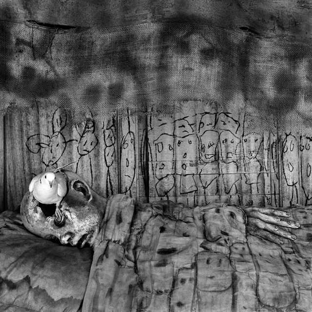 deathbed [2010] photographed by SOME/THINGS contributor ROGER BALLEN to be featured in his upcoming book on the birds series