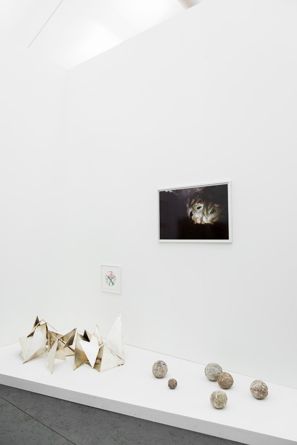 adrian villar rojas pierre huyghe marian goodman gallery by nat urazmetova | SOME/THINGS S/TUDIO