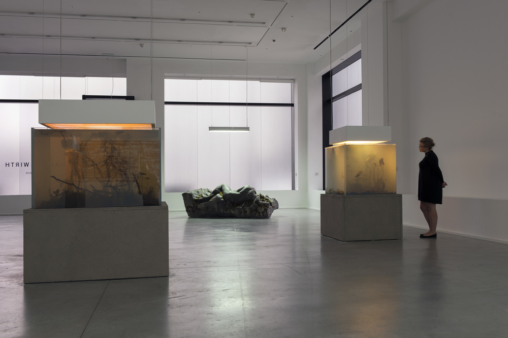 installation view, 'pierre huyghe. IN. BORDER. DEEP', hauser & wirth london, 2014 © pierre huyghe courtesy the artist and hauser & wirth, london. photography by hugo glendinning