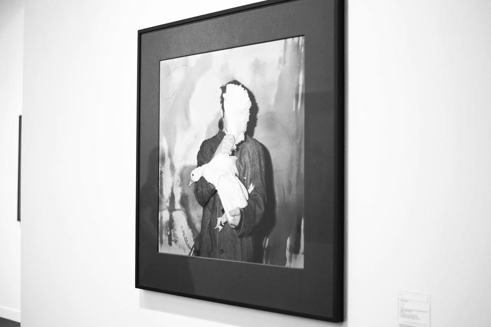 roger ballen galerie karsten greve photography by floriana castagna | S/TUDIO