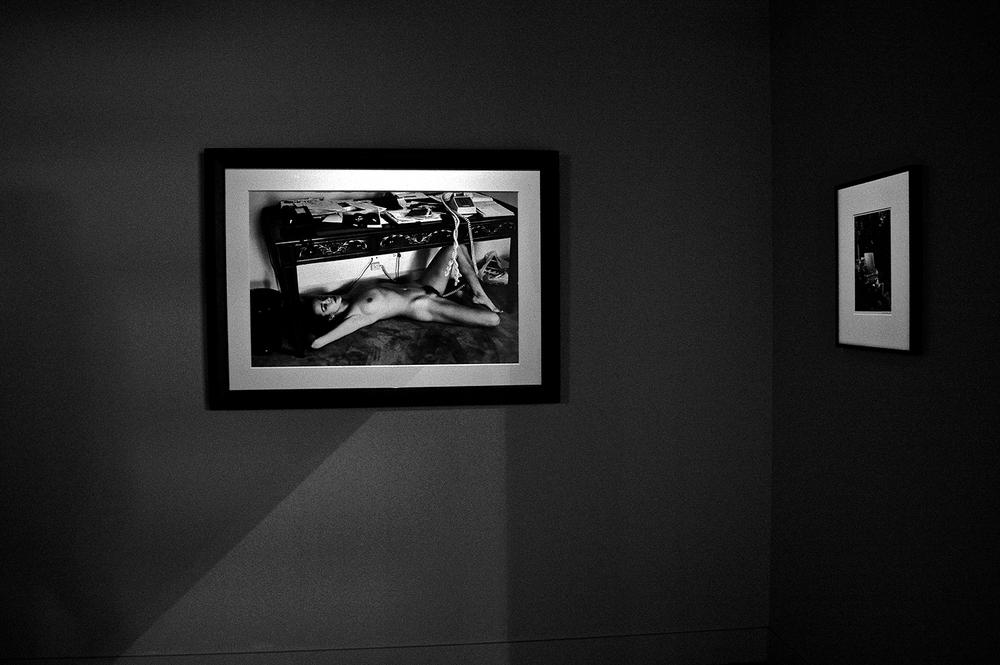 hamilton gallery london / helmut newton 'domestic nude x'
