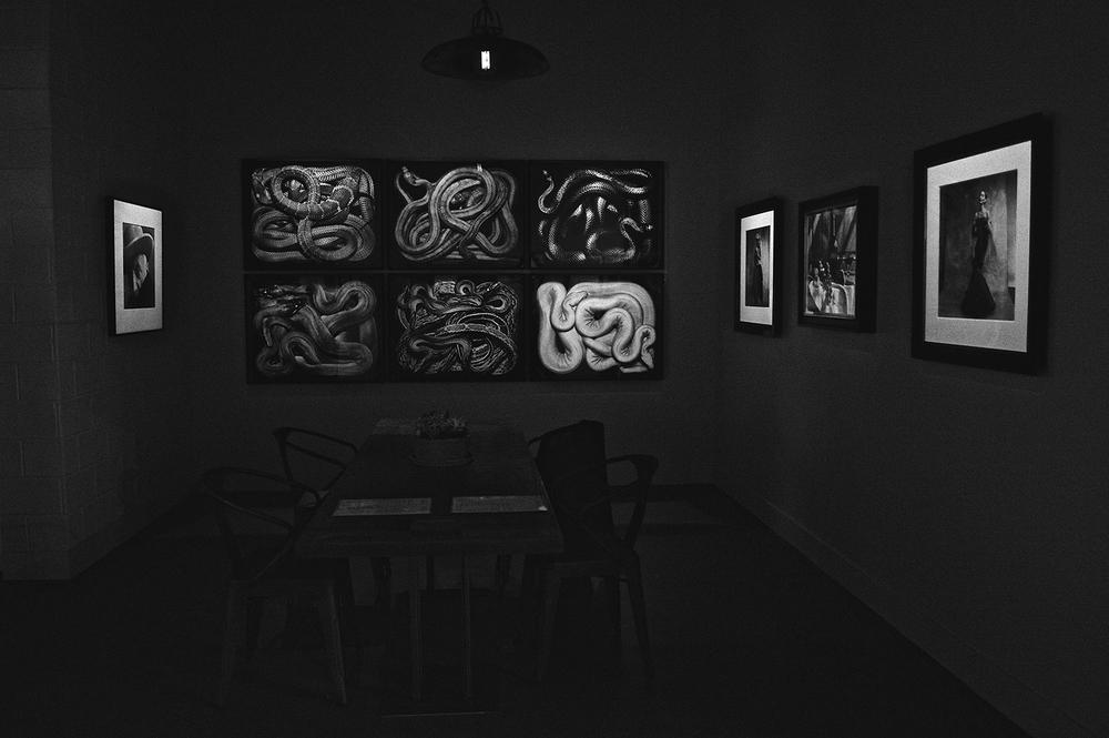 hamilton gallery london /guido morafico 'serpens series'
