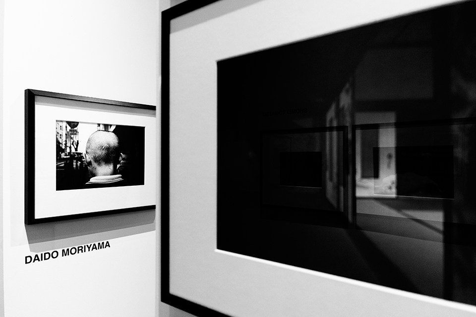 'daido moriyama' photography by nat urazmetova | S/TUDIO