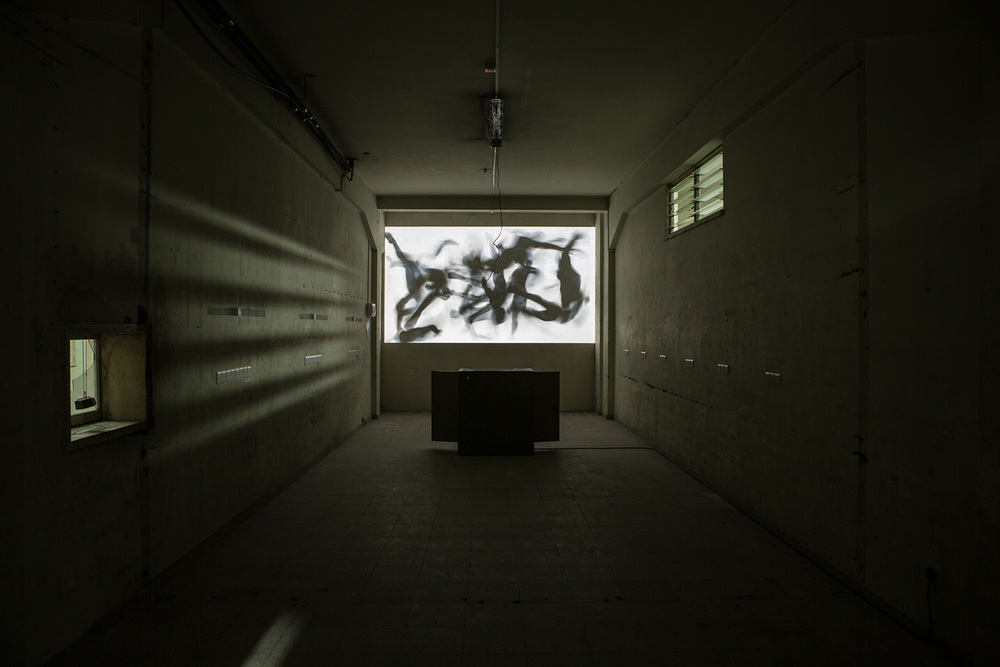 kurt hentschläger - CLUSTER X video installation