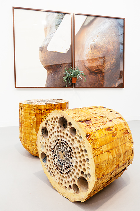 ernesto neto at galeria fortes vilaca photography by nat urazmetova | S/TUDIO