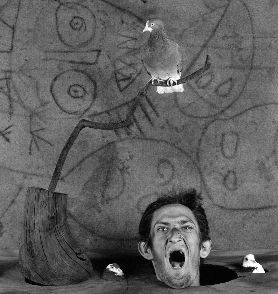 "Scream. From the series ""Asylum of the Birds"" © Roger Ballen"