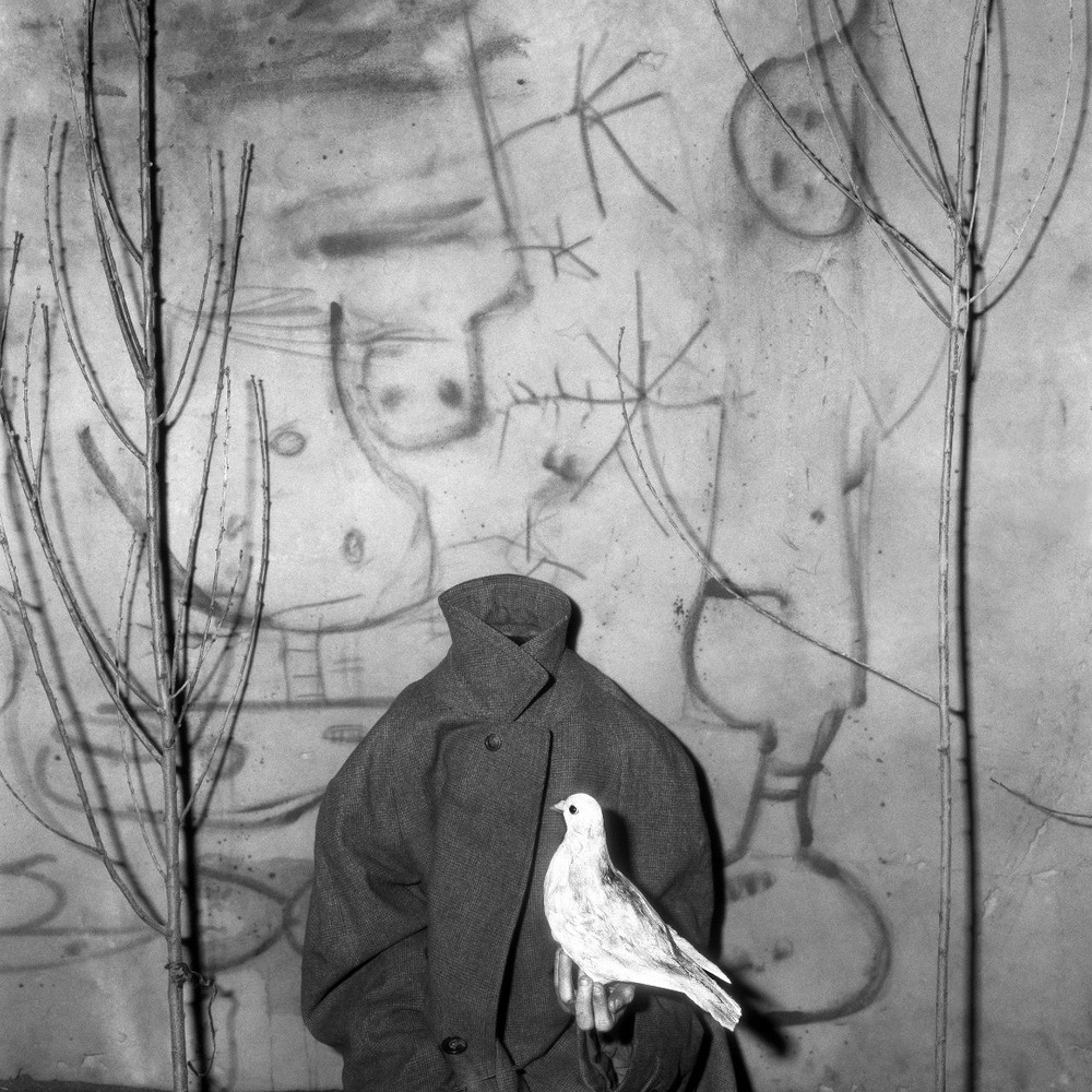 "Headless. From the series ""Asylum of the Birds"" © Roger Ballen"