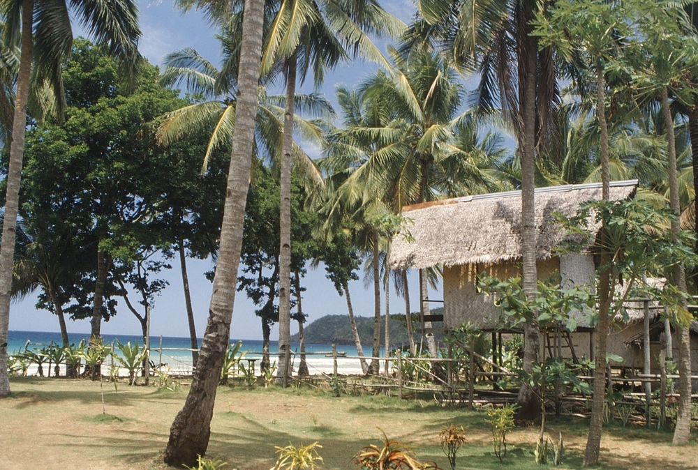 Palawan_-_Tropical_Hut.jpg