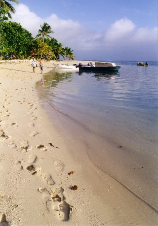 Beach_leleuvia.jpg