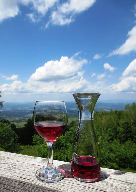 Slovenia-red-wine