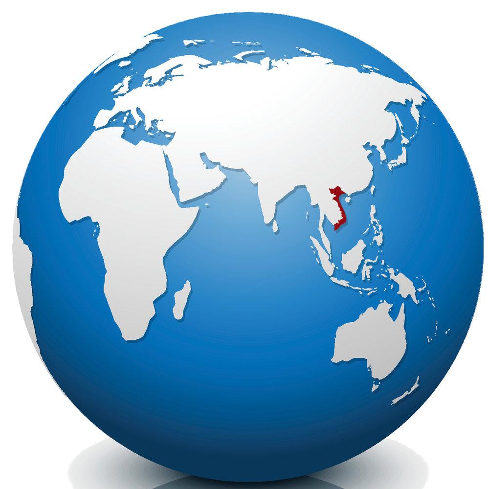 Vietnam Adapters