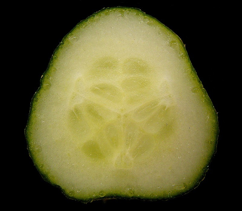 The lutein in cucumber doesn't just brighten your skin: studies show it actually keeps your eyes healthy by fighting cataracts and macular degeneration!  Image credit: Frank Vicentz