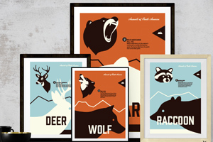 Wildlife of North America Illustration/Design
