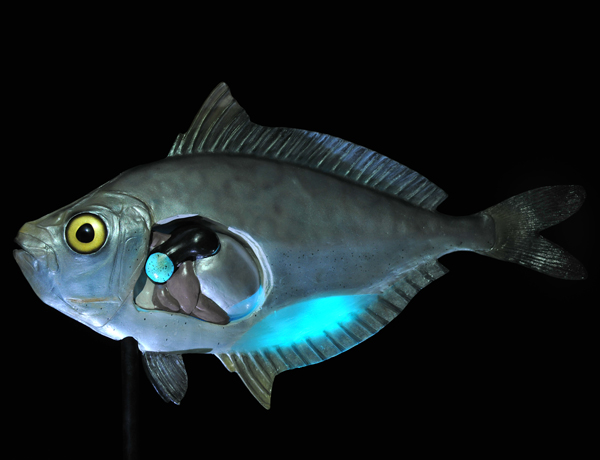 Ponyfish.jpg