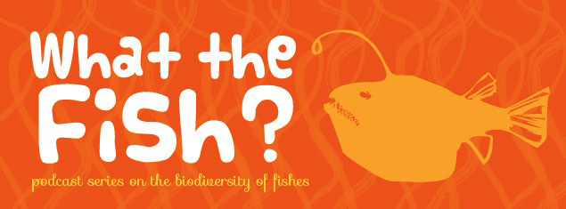 What_The_Fish_Logo.jpg